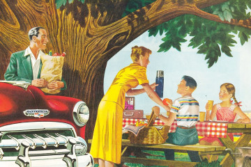 Jole-picnic-paralalx